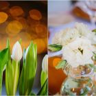 White tulips and lizzies