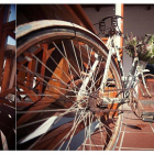 Vintage bicycle an old favourite