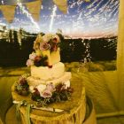 Cake and rustic cake stump